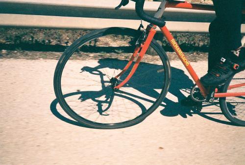 Sachs shadow