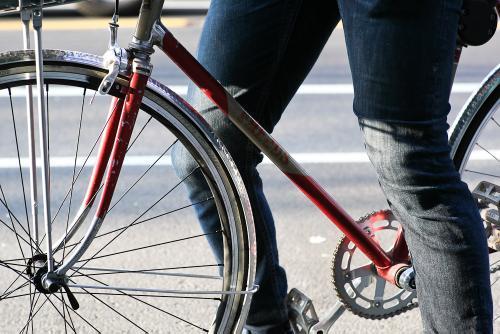 Frejus Basket Bike