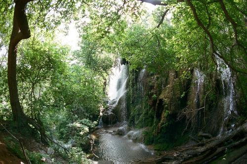 Gorman's Falls