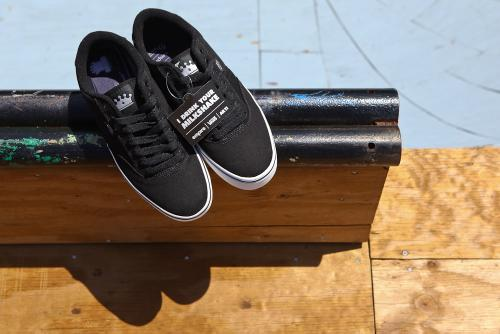 Vans / Empire BMX Ruark shoes