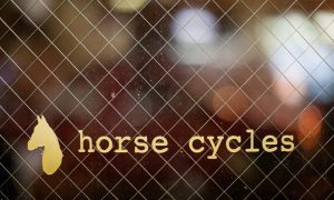 Shop Visit: Horse Cycles