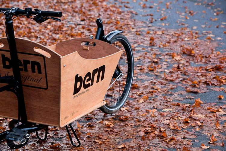 Billy's Metrofiets Cargo Bike