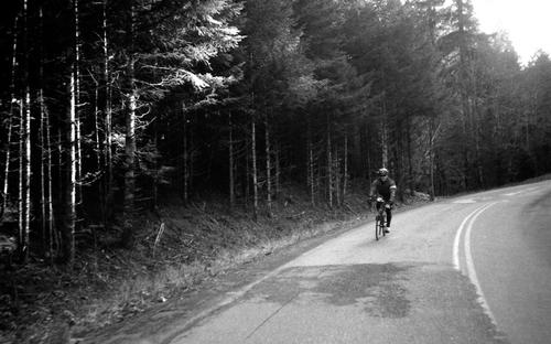 Recent Roll: Argonaut Ride in Mt. Hood National Forest