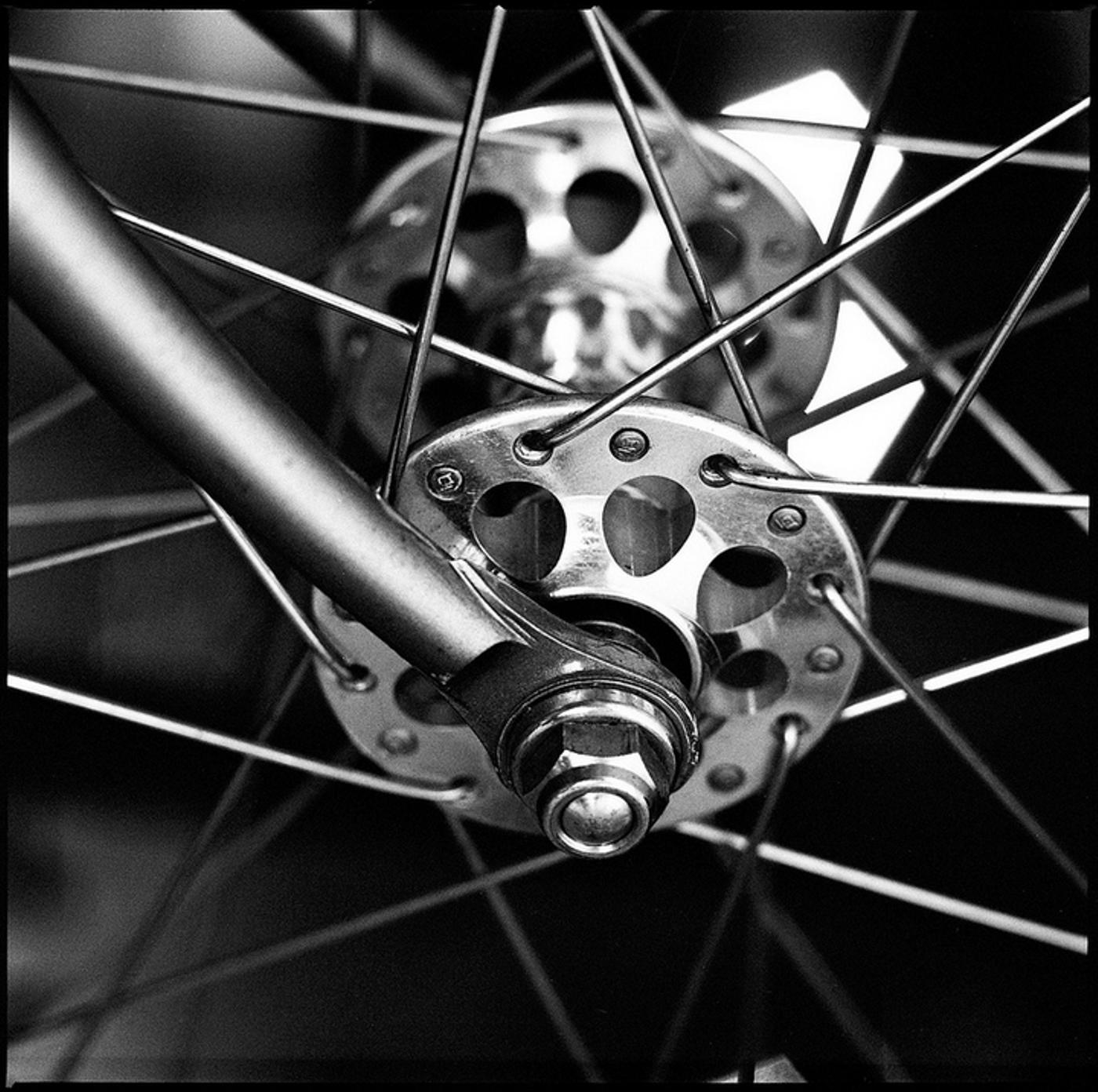 Damian Riehl: Bicycle Parts Study