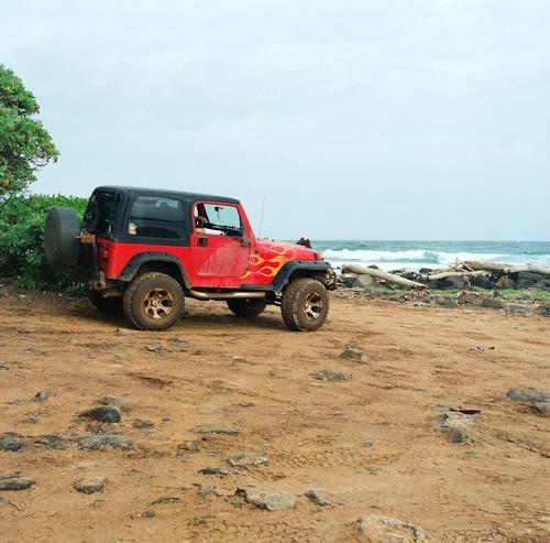 Recent Roll: Hawaiin #Naturevibes