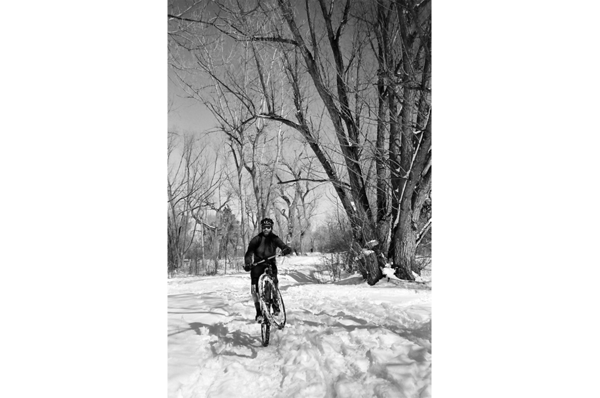 Recent Roll: Snow Day!