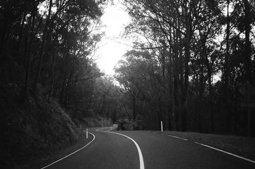 The winding roads that took us home...