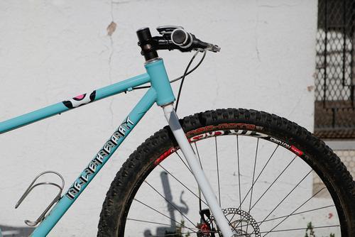 Beautiful Bicycle: Natalia's Igleheart SS MTB