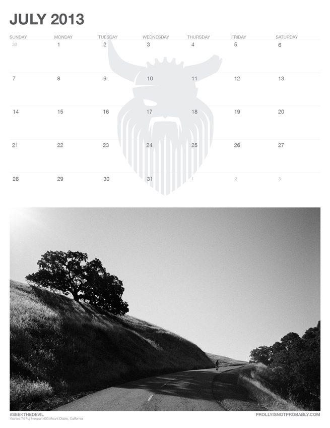 PINP_July2013_web