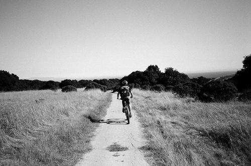 Recent Roll: Santa Cruz is Dirt Heaven