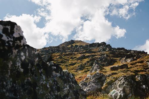 Rocky, tundra, mottled color.
