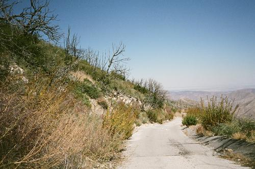 Then, the ride down. So steep, so hot that the valve stem on my tube melted, flatting my rear wheel.