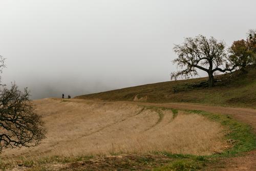 On each turn, we found a wall of fog.
