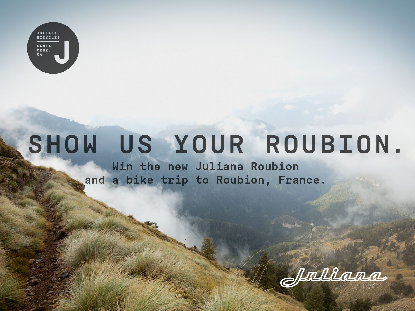 ROUBION LAYOUT FOR NEWSLETTER