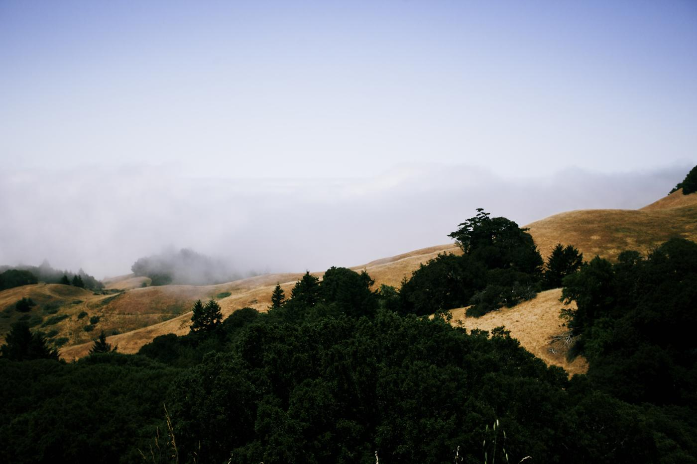 Seek and Diverge: Deux North's Hunt 4 in Northern California