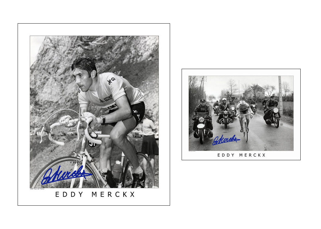 Horton-Collection-EddyMerckx