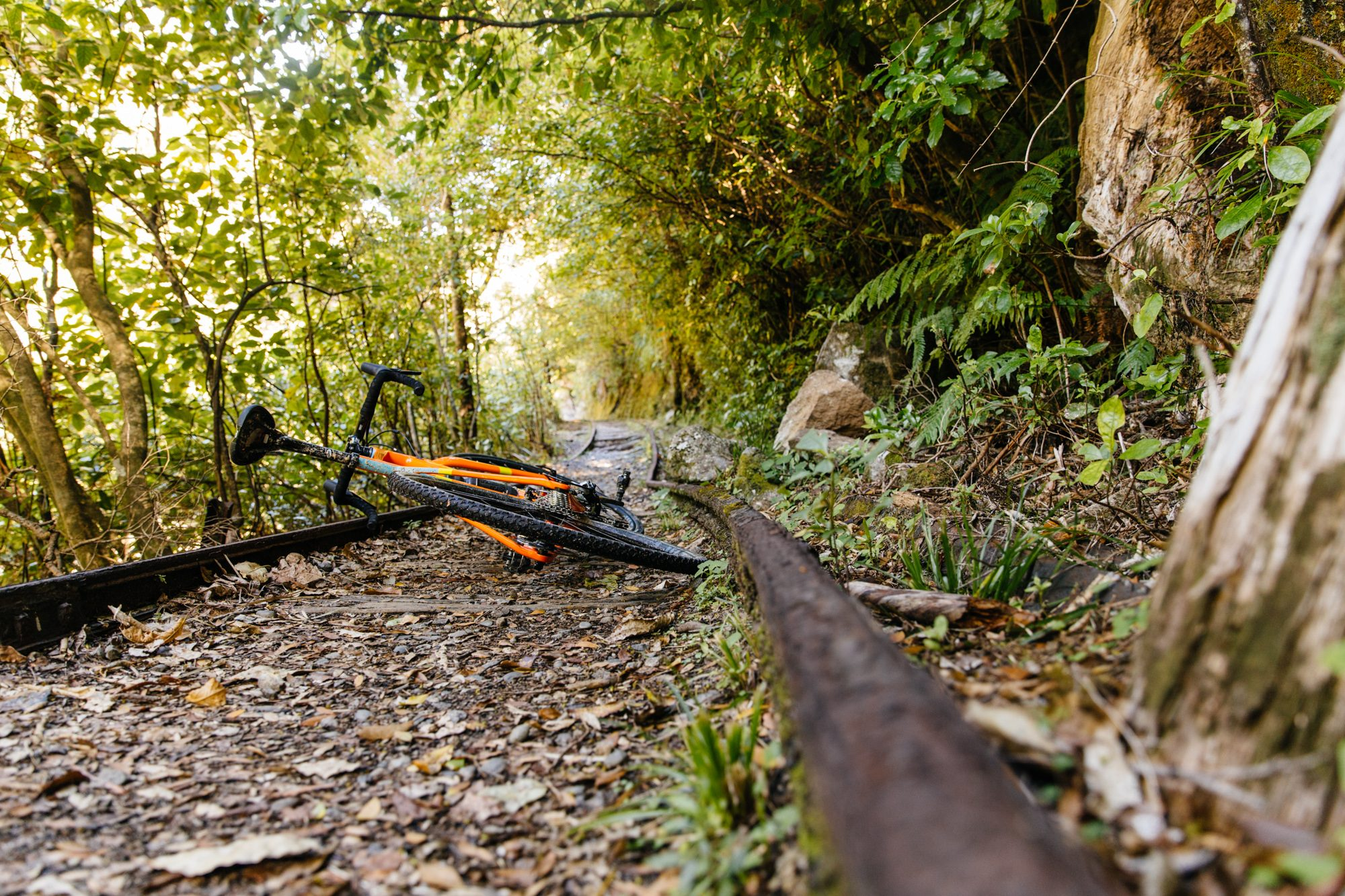 ... a rails to trails path that still had much of the rails left.