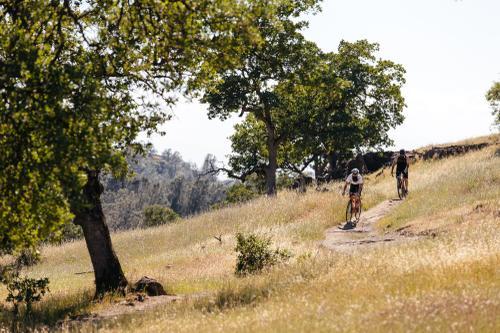 Trail jammin'