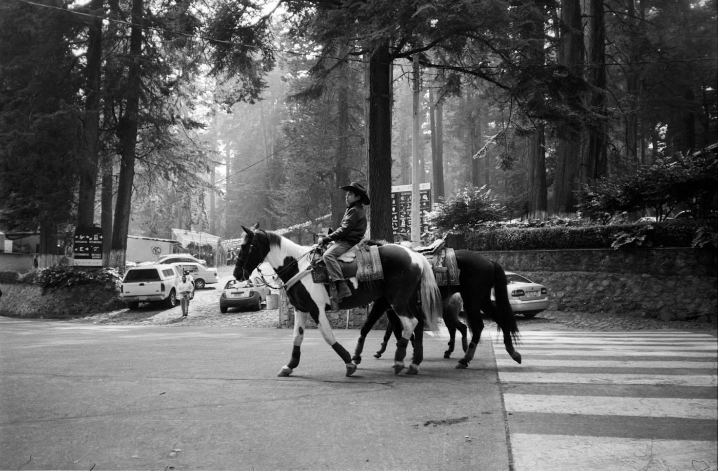 Young Cowboy on horseback, Desierto de Los Leones