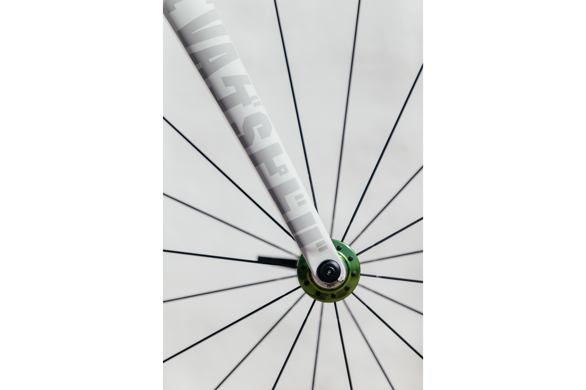 Jaybe's Speedvagen Surprise Me Road with Campagnolo Record 11-22