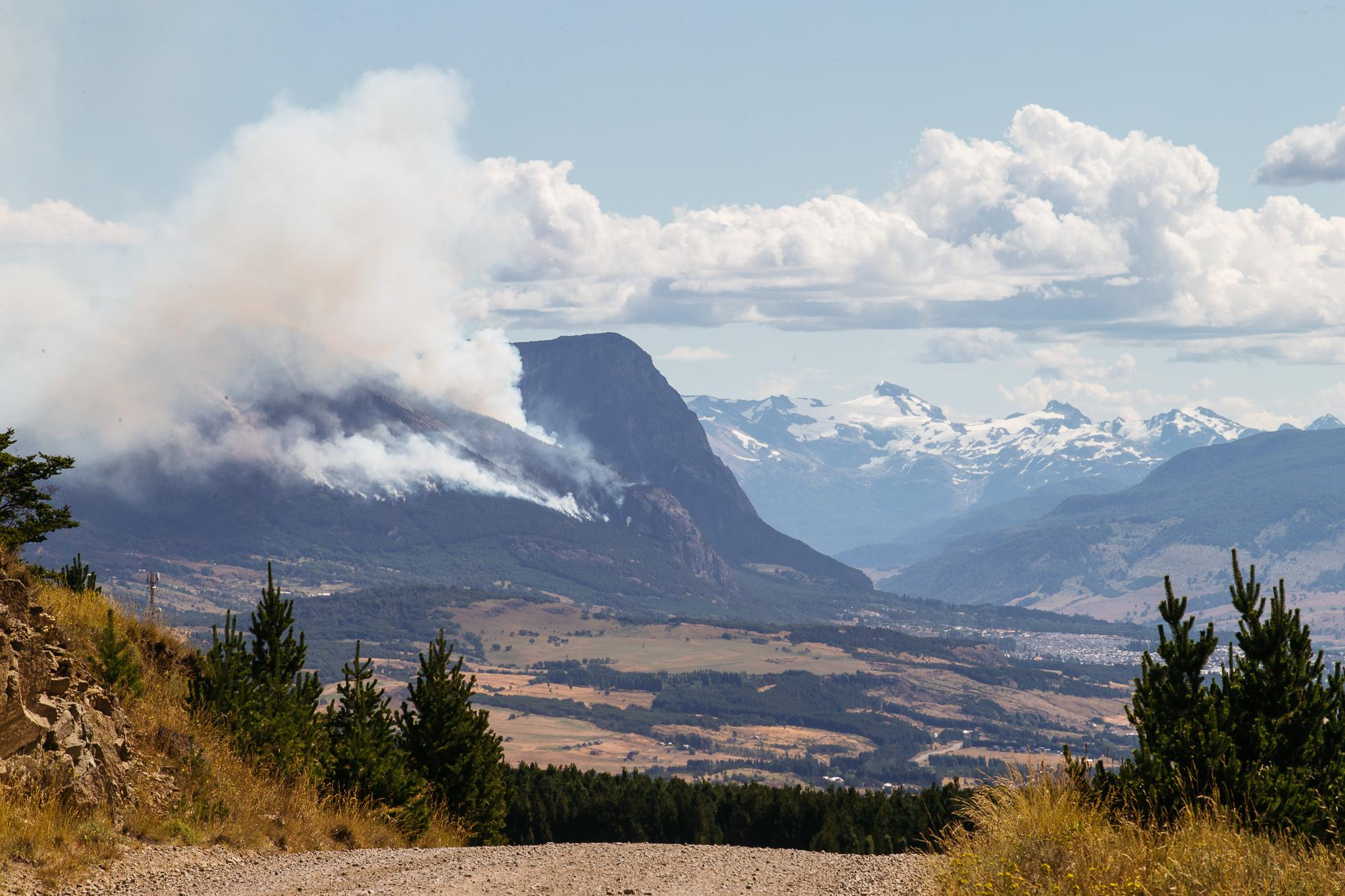 Forest fire burning.