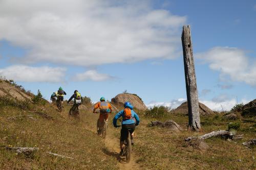 More backcountry singletrack