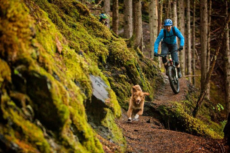 Camaraderie in British Columbia's Selkirk Mountains –Morgan Taylor