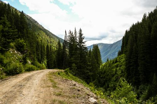 We Will From Now On Be Found in the Mountains –Morgan Taylor