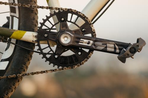 My Agave Marginata Crema Duo 'Cross Bike-33