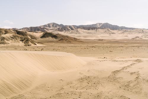 Peru's desert coast