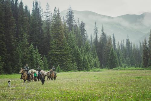 Horse Women of Canada