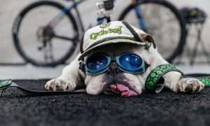 I feel ya, bud!