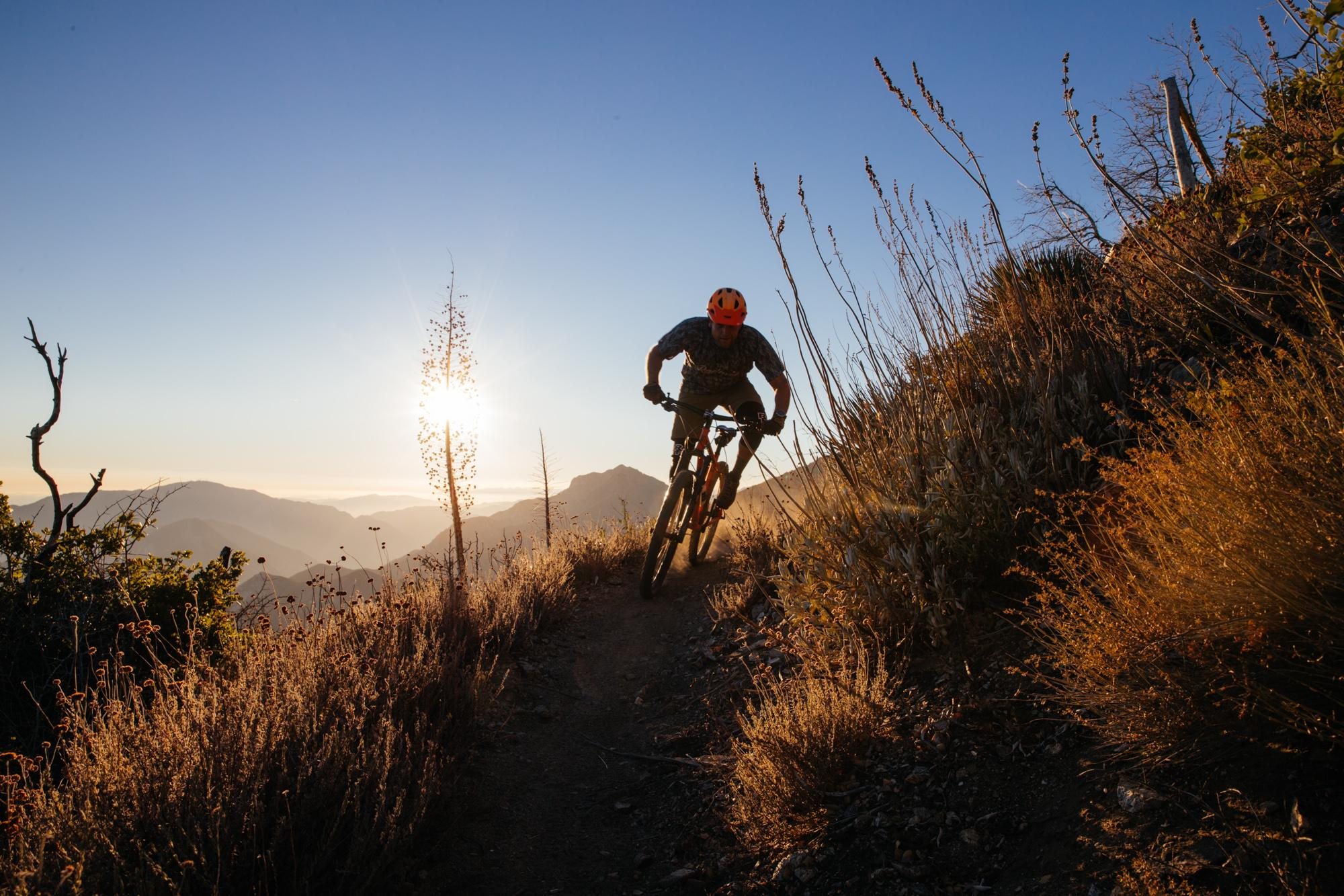 Bang for Your Buck: the Ritchey Timberwolf 27.5 Hardtail MTB - Photo by Kyle Kelley