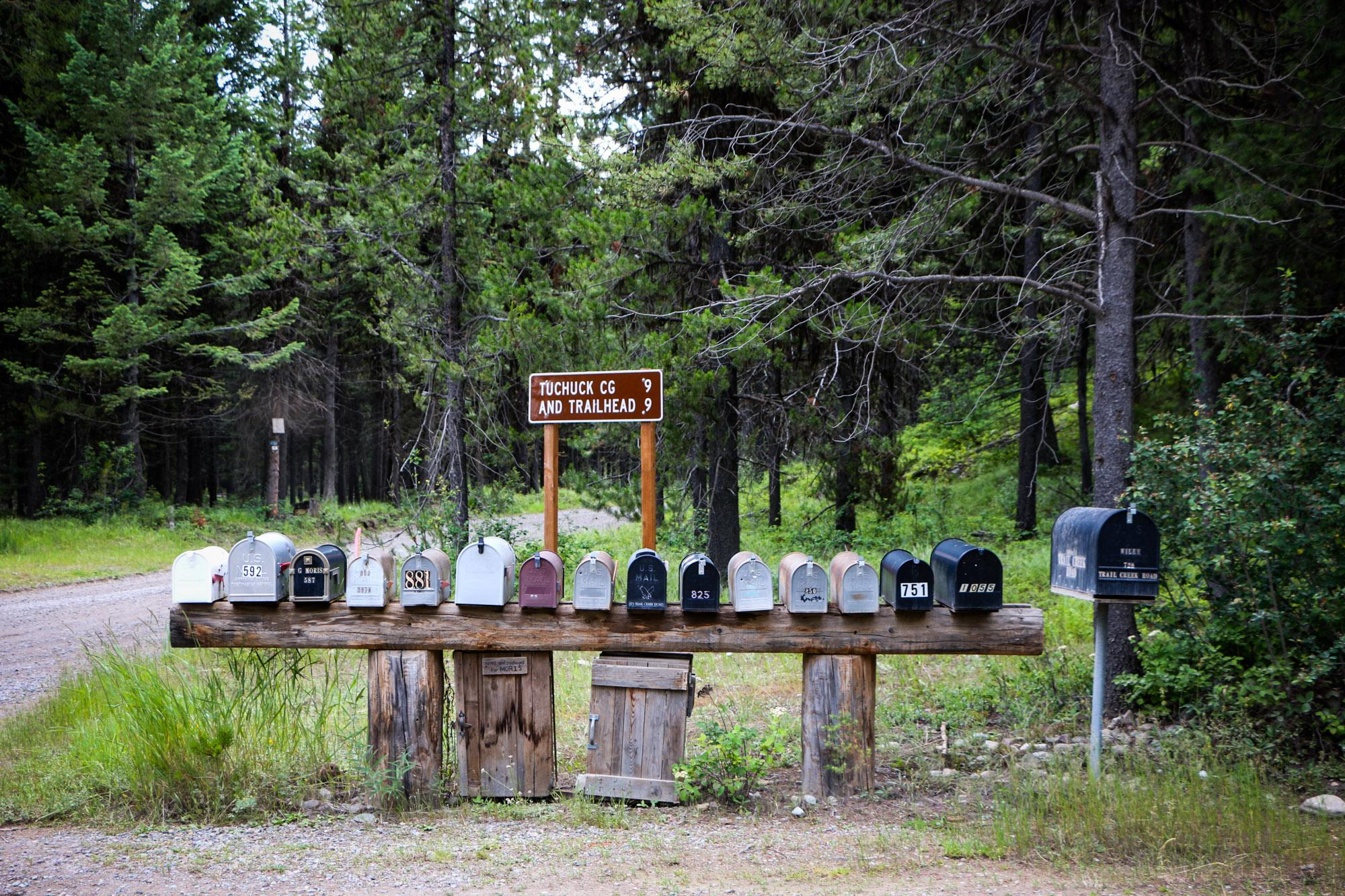 Mail boxes in this area of the country are all unique.
