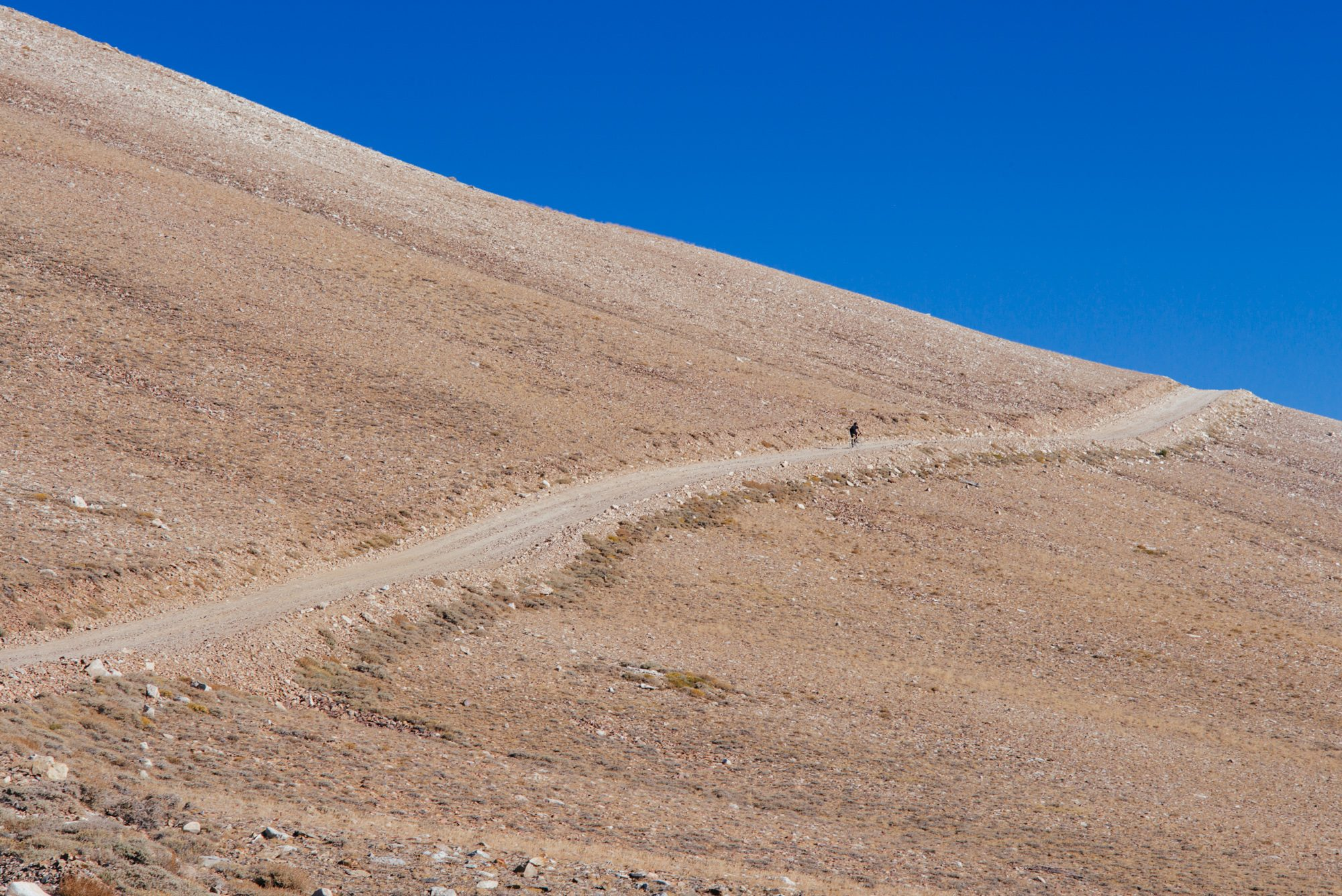 Riding Up White Mountain in the Inyo National Forest-37