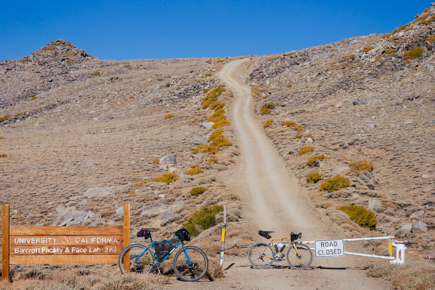 Riding Up White Mountain in the Inyo National Forest-44
