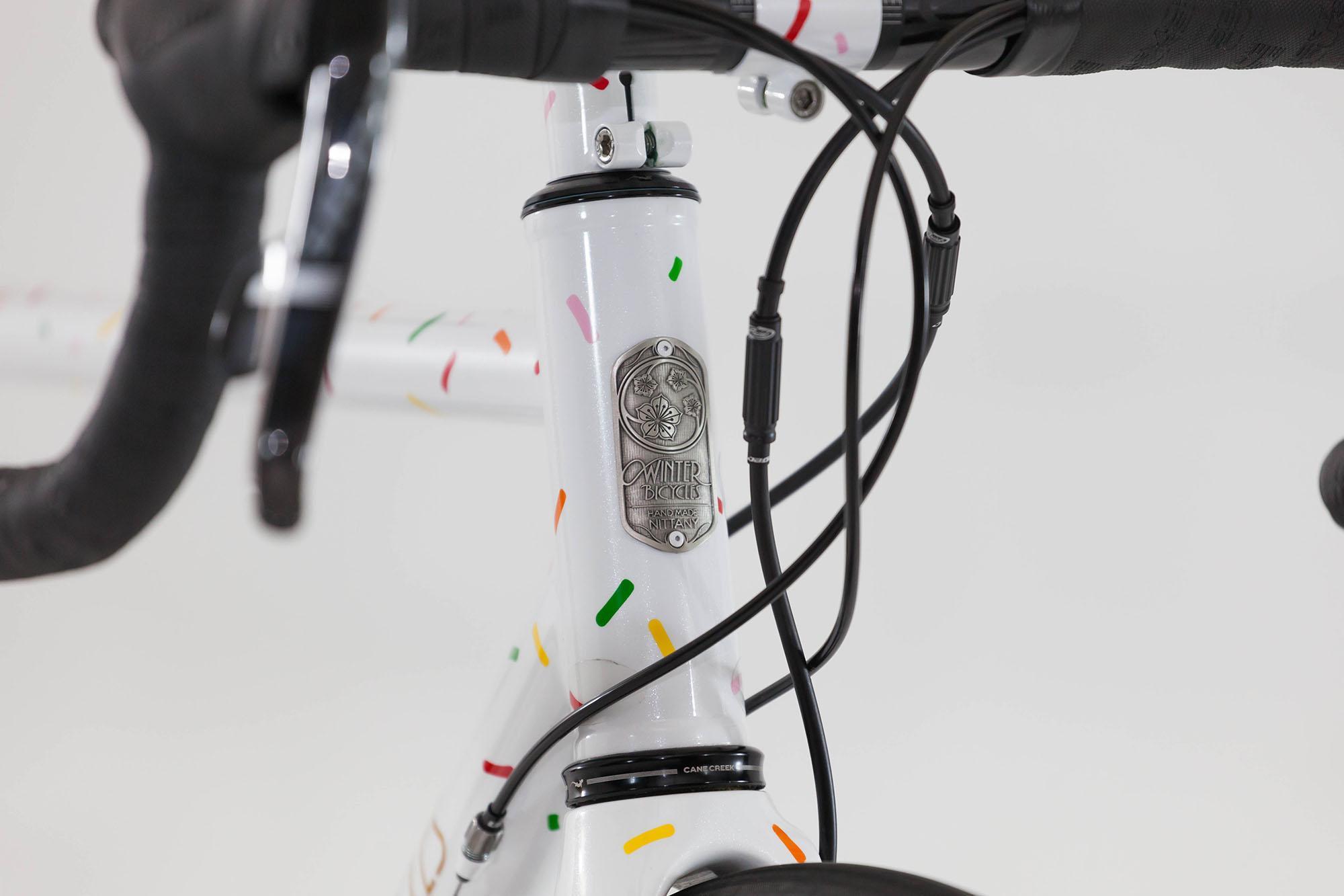 austin's disc road bike-5