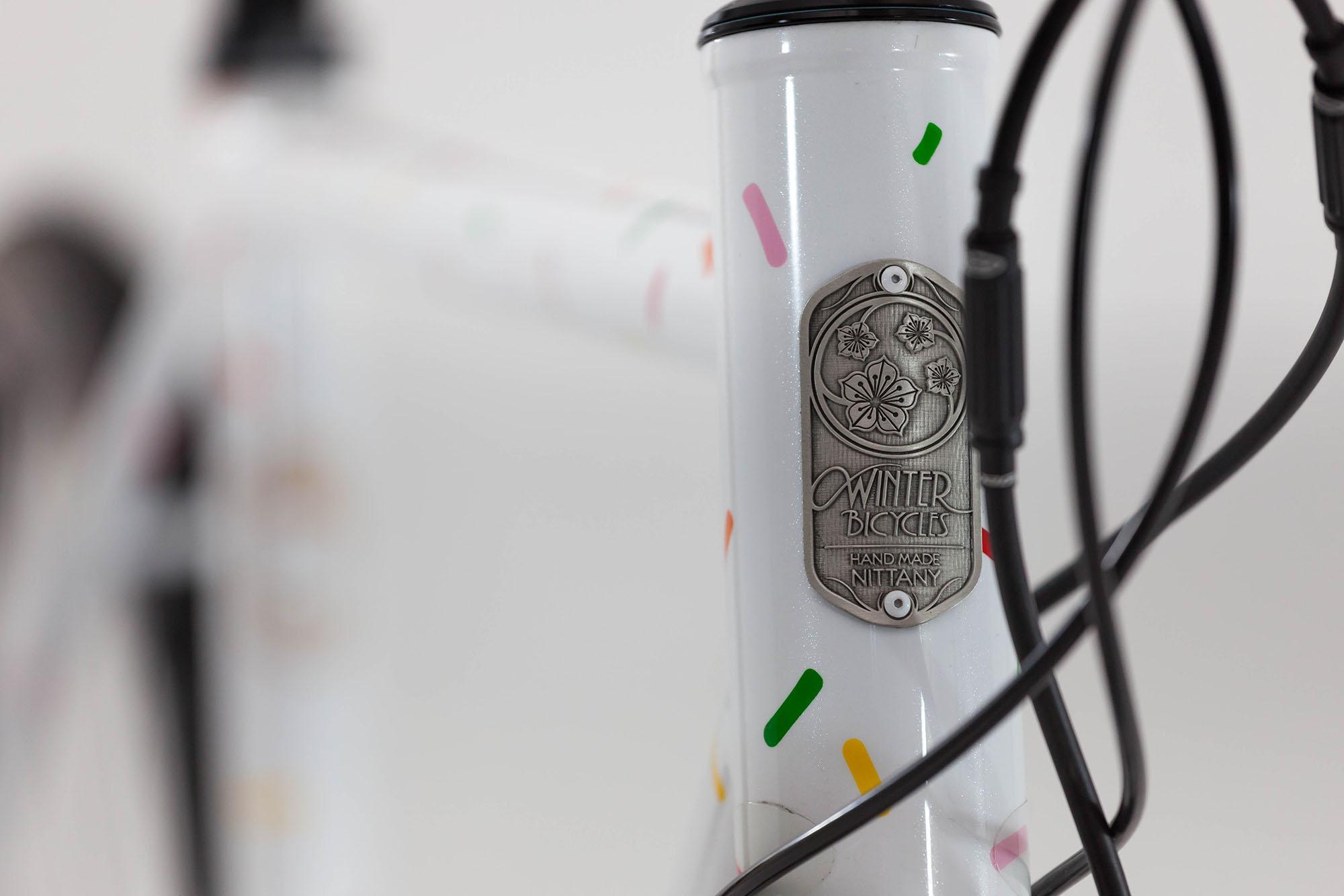 austin's disc road bike-6