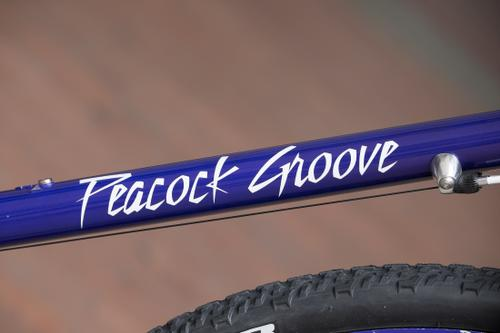 Anna's Peacock Groove: People's Choice Philly Bike Expo 2016
