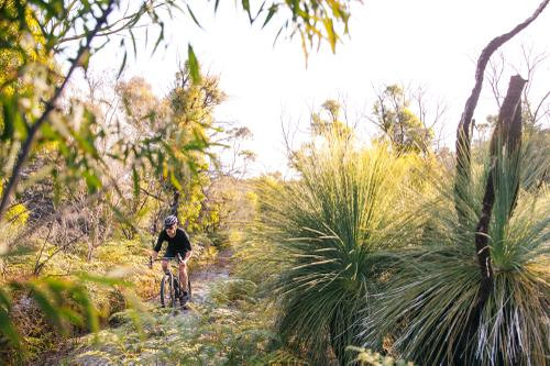 Riding through local Tassie vegetation.