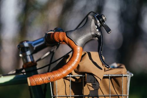 Cari's Elephant National Forest Explorer Touring Bike