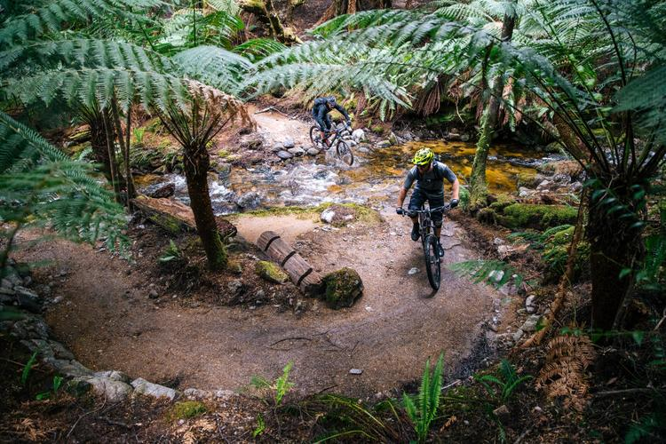 A Weekend at the Blue Derby Mountain Bike Trails in North Eastern Tasmania
