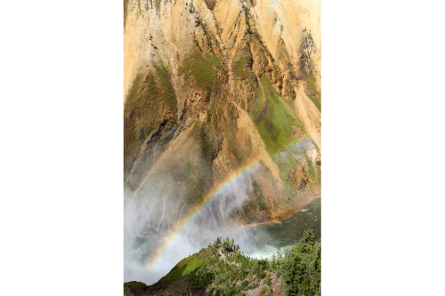 The spray from the falls lands on the canyon walls, resulting in streams and providing hydration for plant life.