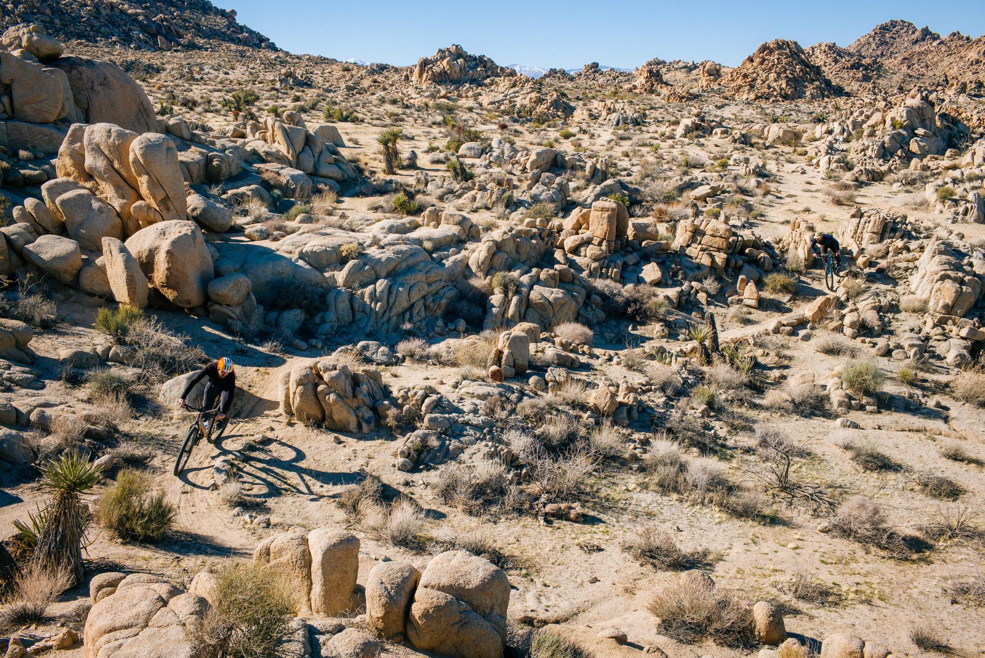 Spot the desert shredderz