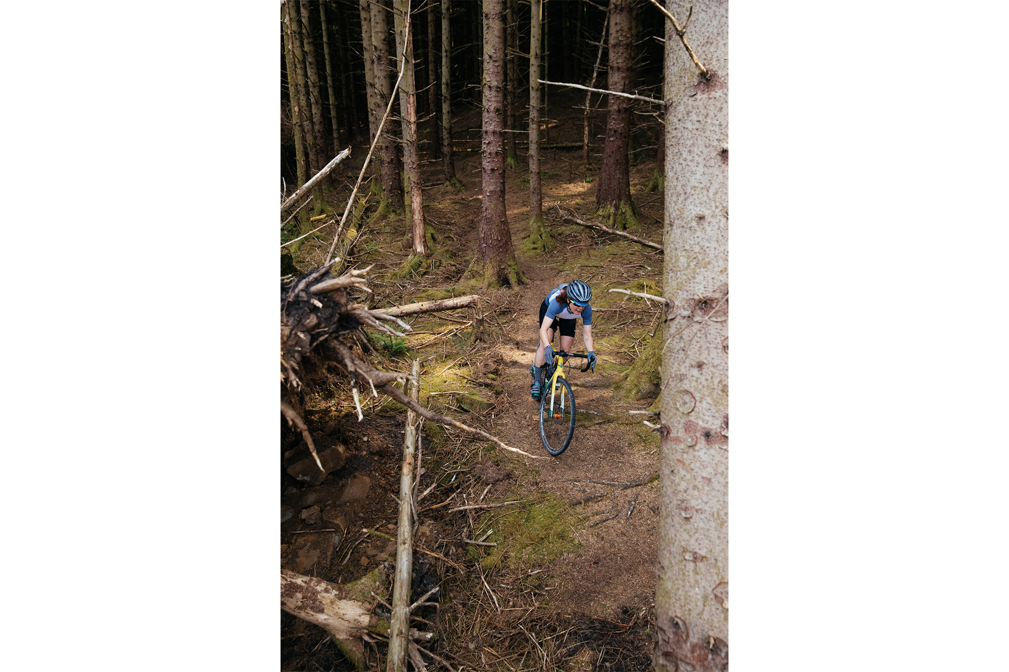 Forest singletrack