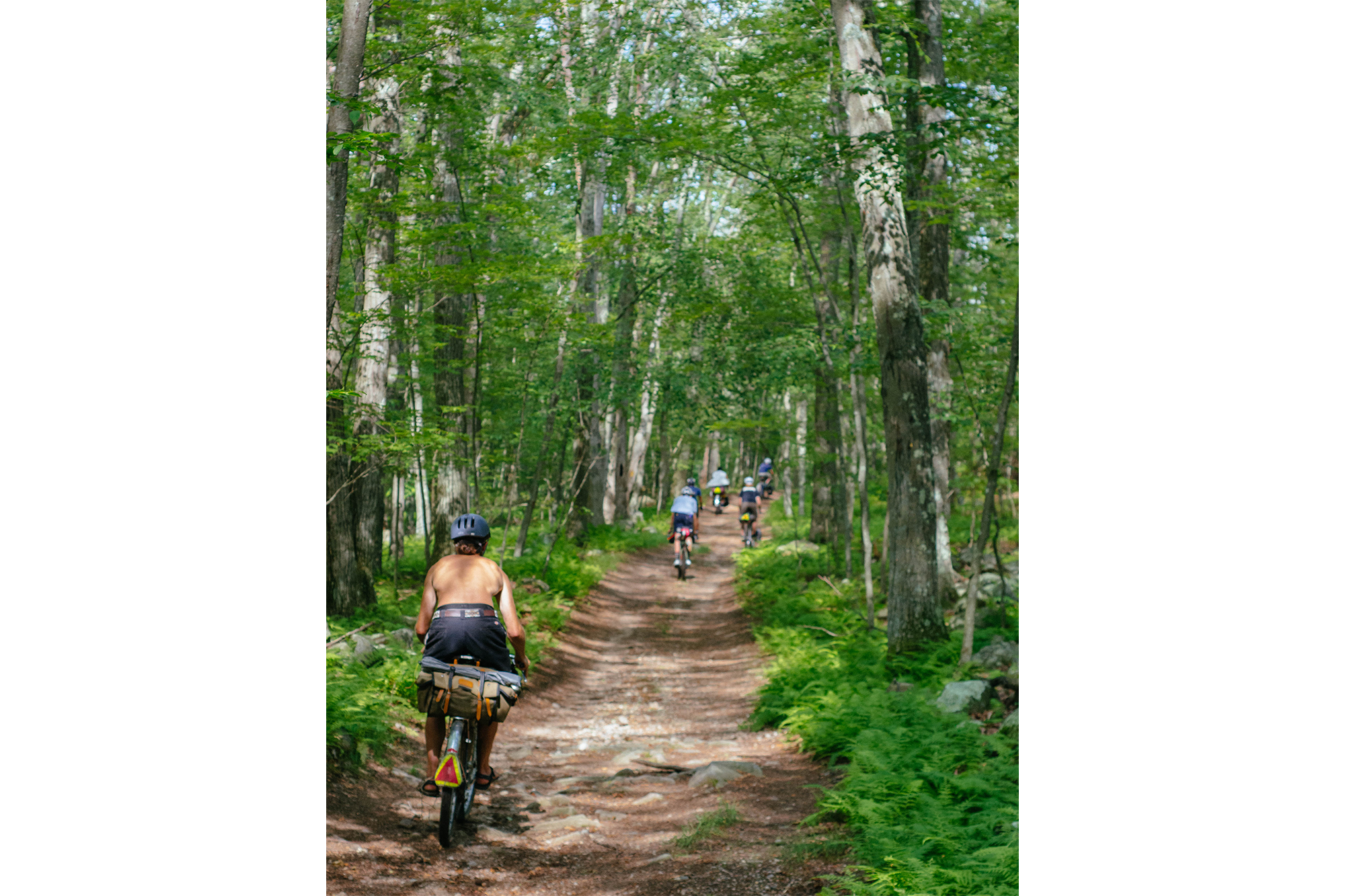 Bicycle Touring the Tick Jungles of New England