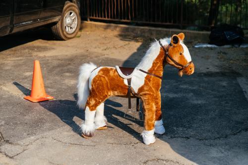 It's a pony.