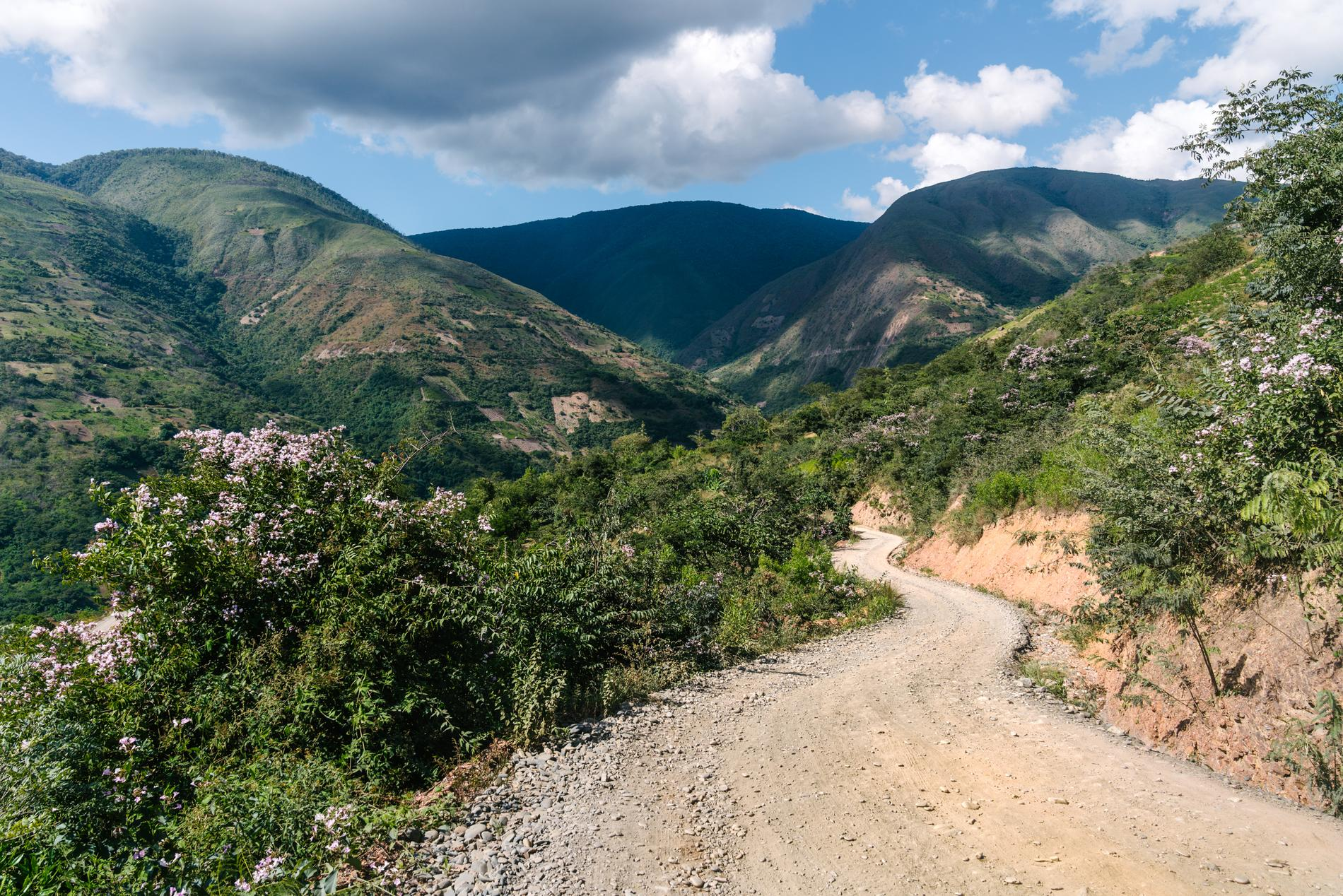 Steep, Dusty, and Humid are the first 3 words that come to mind when I think of the Yungas