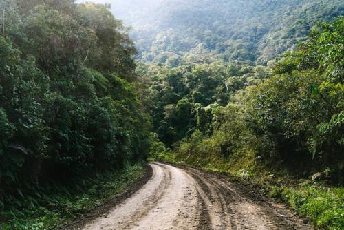 Yungas roads