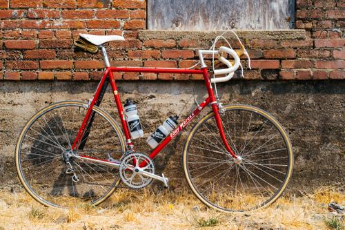 Mike's Merckx!